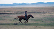 Dostihy, severní Mongolsko.
